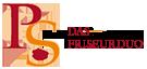 P&S Das Friseurduo - Logo