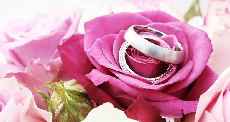 Ariane Schätzle Hochzeitsrednerin - Eheringe auf auf Rosen Bild: Tim Reckmann